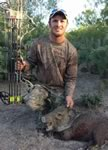 Javelina hunt with a bow